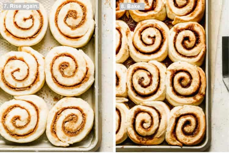 Two process photos of Cinnamon rolls on a baking tray before and after they're baked.