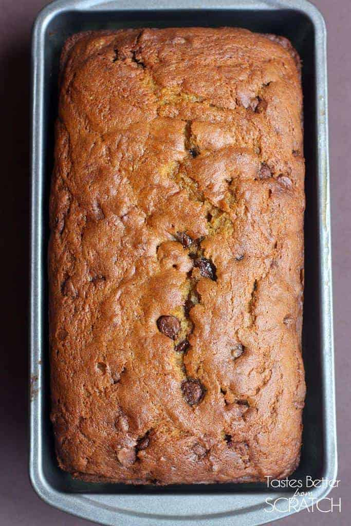 The BEST Pumpkin Chocolate Chip Bread recipe EVER! On TastesBetterFromScratch.com
