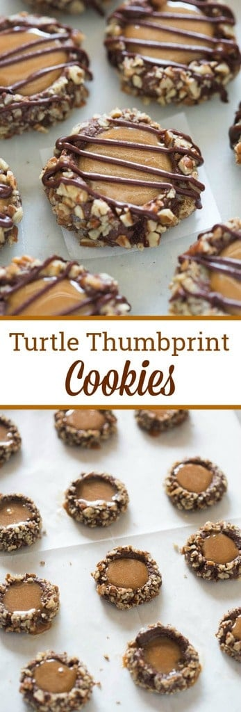 Turtle thumbprint cookies are delicious chocolate cookies, rolled in pecans, filled with melted caramel and drizzled with melted chocolate.