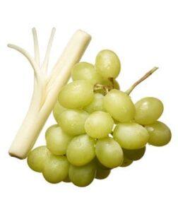 grape-cheese_300