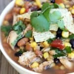 Slow Cooker Chicken Tortilla Soup on TastesBetterFromScratch.com