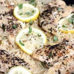 One Pan Lemon Basil Chicken and Rice from TastesBetterFromScratch.com