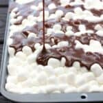Mississippi Mud Cake recipe from TastesBetterFromScratch.com