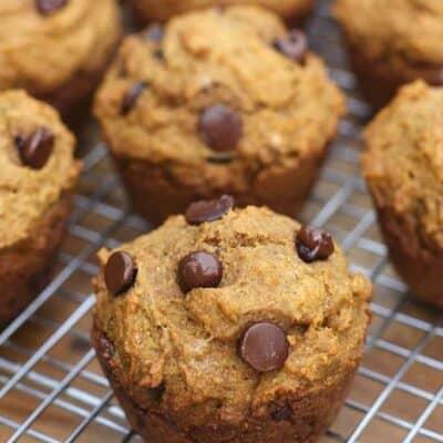 Skinny Pumpkin Chocolate Chip Muffins