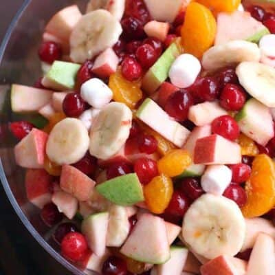 Apple Cranberry Fruit Salad