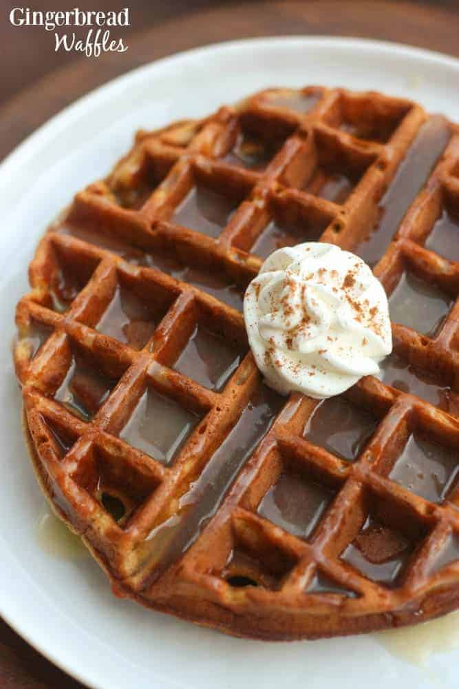 A Gingerbread Waffle on a round white plate topped with vanilla cream syrup and a dollop of whipped cream.