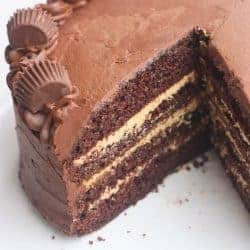 Chocolate Peanut Butter Cake | Tastes Better From Scratch
