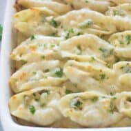 Chicken and Broccoli Alfredo Stuffed Shells | Tastes Better From Scratch