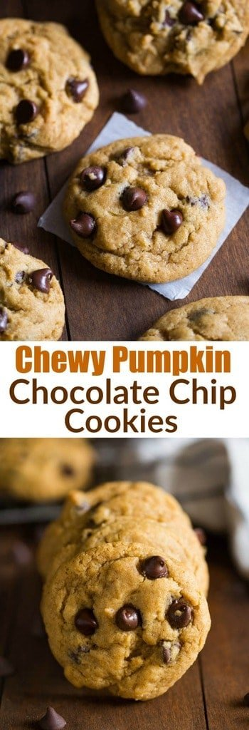 Non-cakey, bakery style chewy pumpkin chocolate chip cookies. These cookies are AMAZING! Picture your favorite chocolate chip cookies mashed up with the flavors of pumpkin and fall spices. Completely addicting!