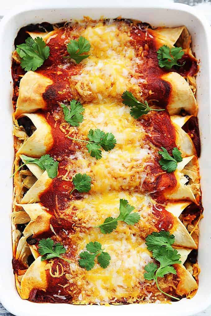 Several turkey enchiladas in a white dish topped with sauce, cheese, and cilantro.