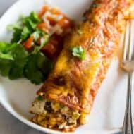 A chicken enchilada with red sauce served on a white plate with a fork and a side of pico de gallo and cilantro.