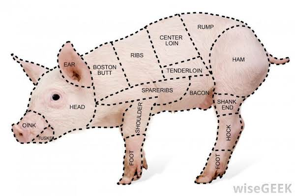 An image of a pic that highlights the different cuts of meat found from a pig.
