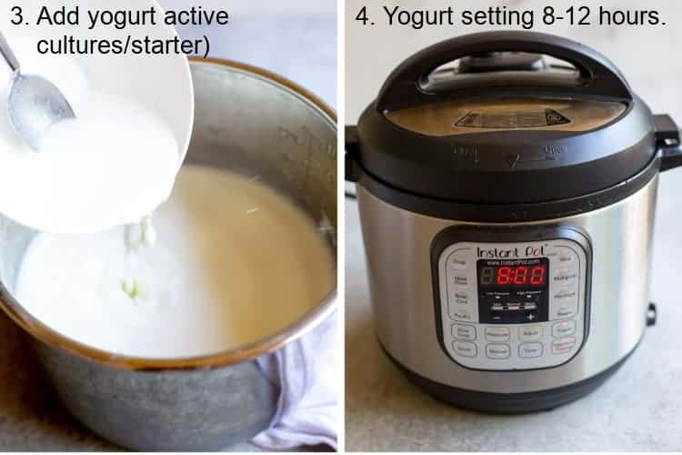 Active cultures added to warm milk, then Instant Pot timer set.