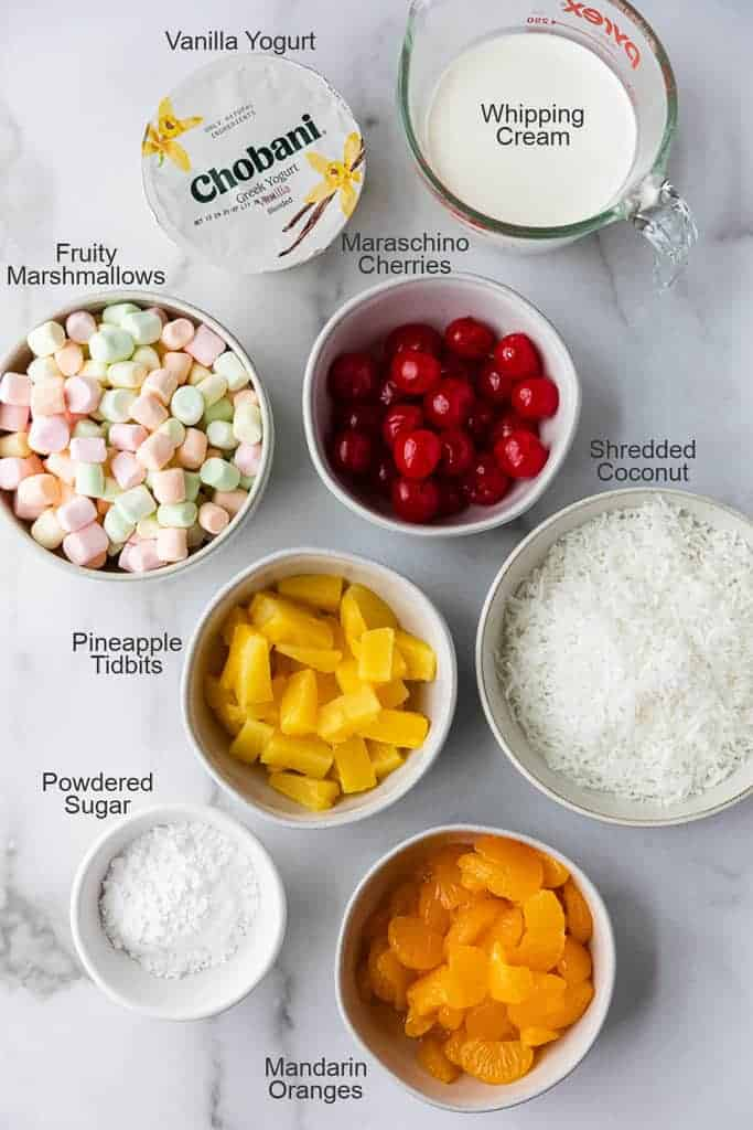 The ingredients needed to make Ambrosia Salad, presented in separate bowls, with labels.